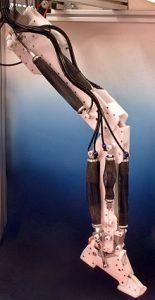A robotic leg [Image by Dr. Gopal U. Shinde].